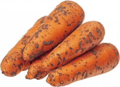 Морковь отборная ~ 1кг